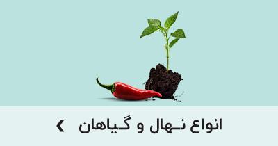 انواع نهال و گیاهان