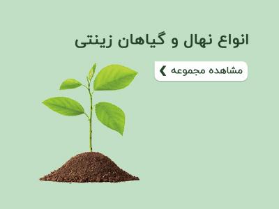 انواع نهال و گیاهان زینتی