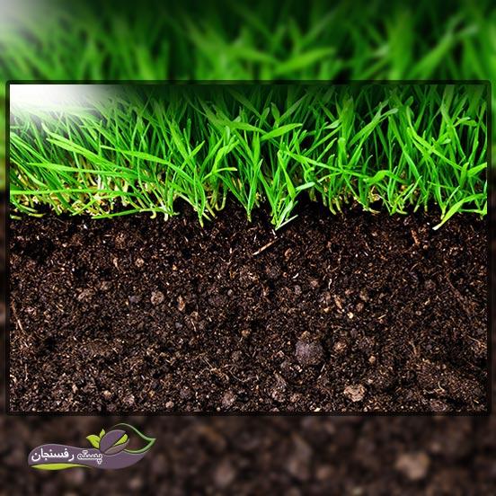 بهبود خاک باغچه با افزودن مواد آلی