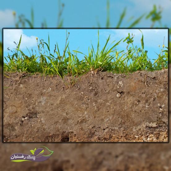 انواع بافت خاک، روش تشخیص و مواد مغذی در آن ها