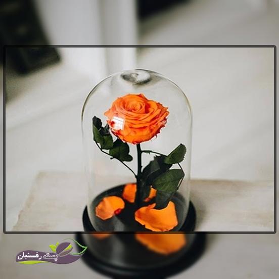 چگونه یک گل جاودان در منزل بسازیم؟
