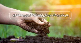 با توجه کردن به خاک، منبع غذایی ارزشمند گیاه خود را غنی و حاصلخیز کنید