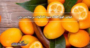 آشنایی با خواص میوه کامکوات بر سلامتی بدن