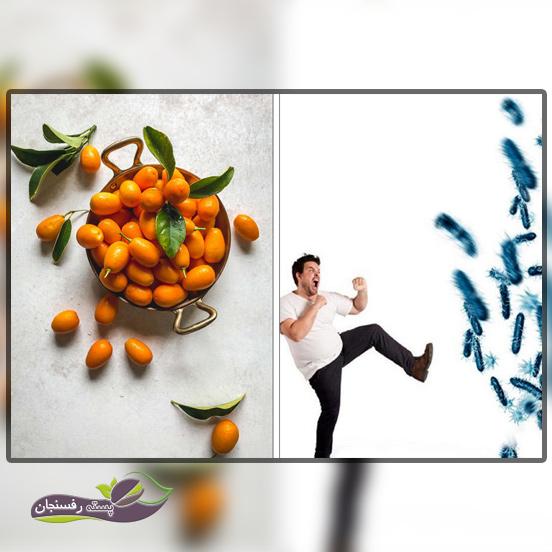 میوه کامکوات، افزایش دهنده عملکرد سیستم ایمنی