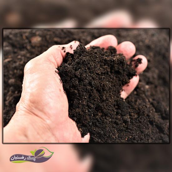 نمونه برداری مرحله مهم یک آزمایش خاک