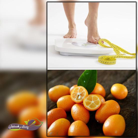 میوه کامکوات، کمک به مبارزه با چاقی و اختلالات مرتبط