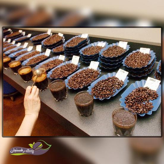 گونه های متفاوت و رایج قهوه