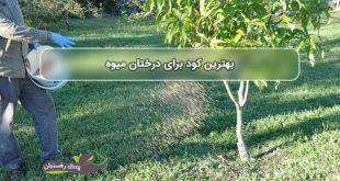 بهترین کود برای درختان میوه