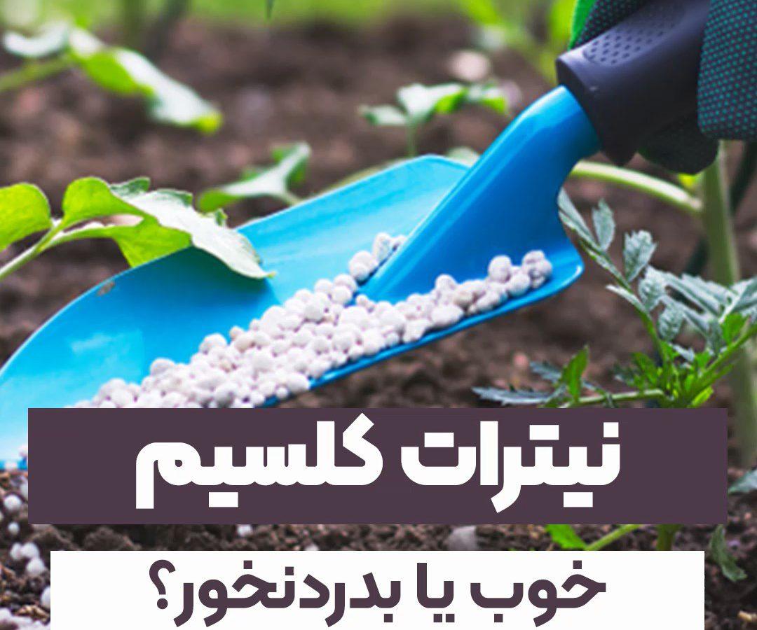 تاثیر عنصر کلسیم در کشاورزی