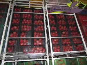 نگهداری و انبار کردن میوه انار