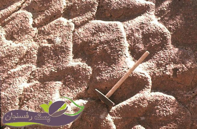 خاک های رسوبی