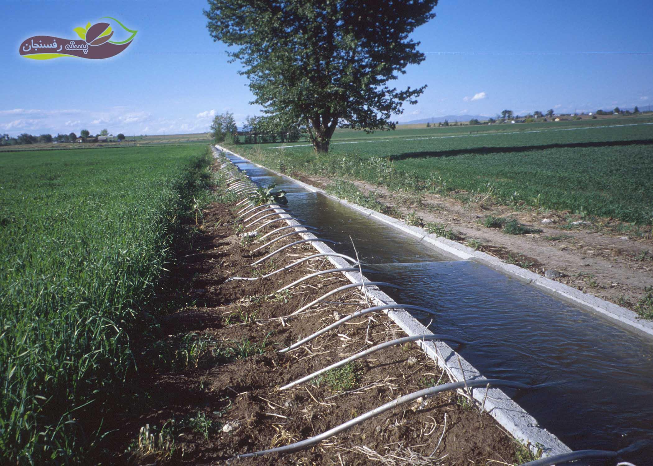 تزریق گچ در آب آبیاری