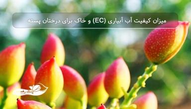 میزان-كیفیت-آب-آبیاری-EC-و-خاک-برای-درختان-پسته..jpg