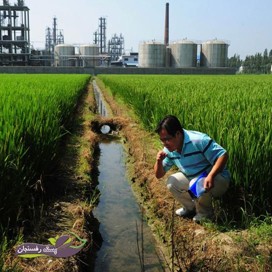 تشخیص کیفیت آب آبیاری