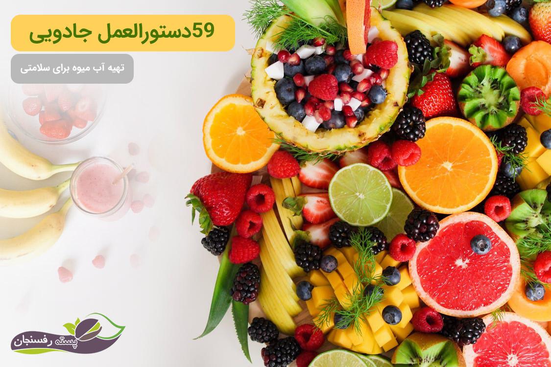 دستورالعمل هایی برای تهیه آب میوه