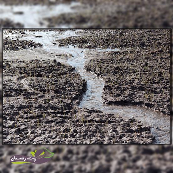 خصوصیات آب و خاک باغ و اصلاح آن
