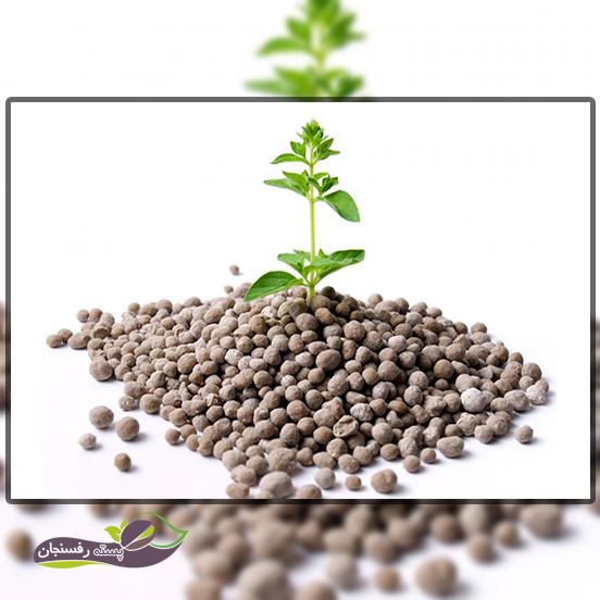 ازت آمونیاکی برای گیاهان