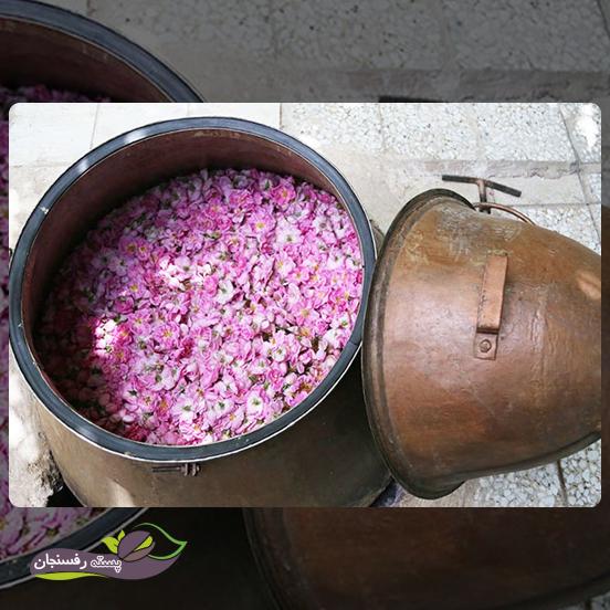 بسته بندی گل محمدی چگونه است؟