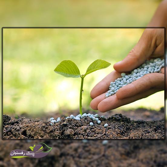 پس از مصرف کودآبیاری چند درصد از نتیروژن مصرفی در خاک بازیافت نمی شود؟