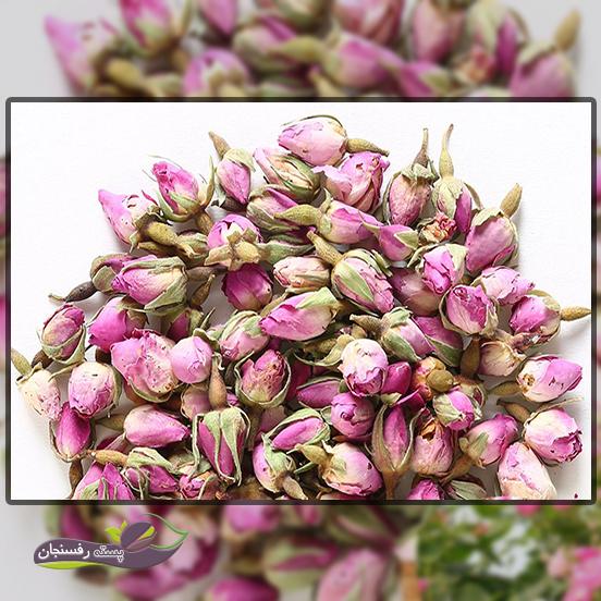 اثرات دارویی مهم در ترکیبات گل محمدی