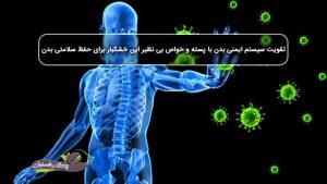 تقویت سیستم ایمنی بدن با پسته و خواص بی نظیر این خشکبار برای حفظ سلامتی بدن