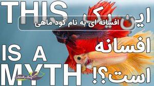 افسانه کود ماهی