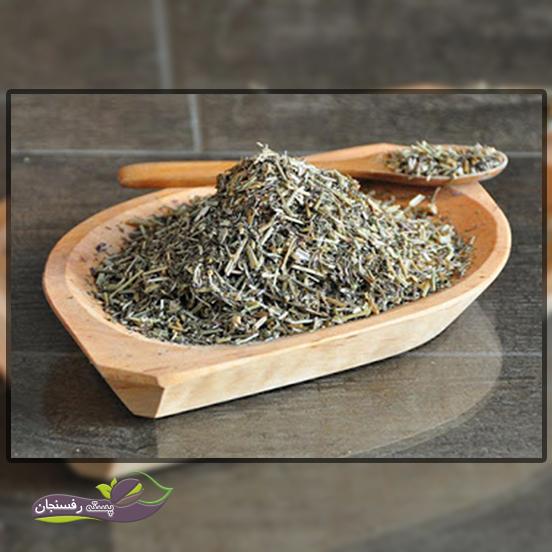 خواص و کاربرد دارویی و درمانی گیاه شاهتره