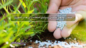 شناخت کودهای شیمیایی و مزایای استفاده از آن در کشاورزی