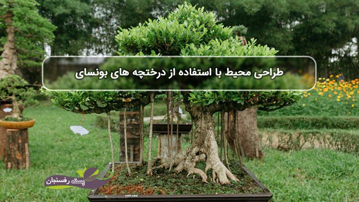 طراحی محیط با استفاده از درختچه های بونسای