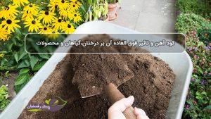 کود آهن و تاثیر فوق العاده آن بر درختان،گیاهان و محصولات