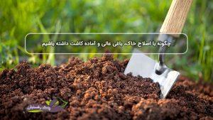 چگونه با اصلاح خاک، باغی عالی و آماده کاشت داشته باشیم
