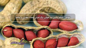 خواص بادام زمینی به عنوان یک میان وعده مغذی و سالم!