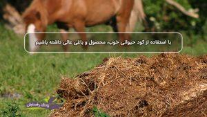 با استفاده از کود حیوانی خوب، محصول و باغی عالی داشته باشیم